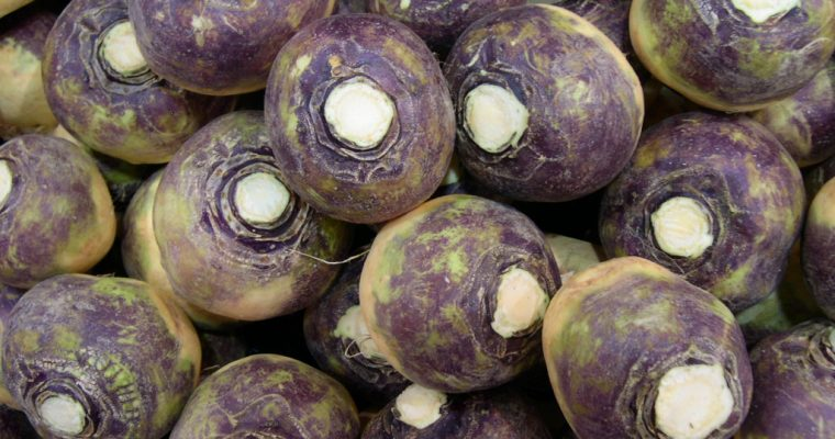 Ingredient of the Week: Swede