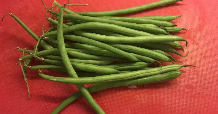 Ingredient of the Week: Green Beans