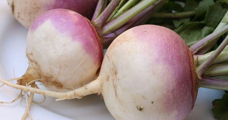 Ingredient of the Week: Turnip