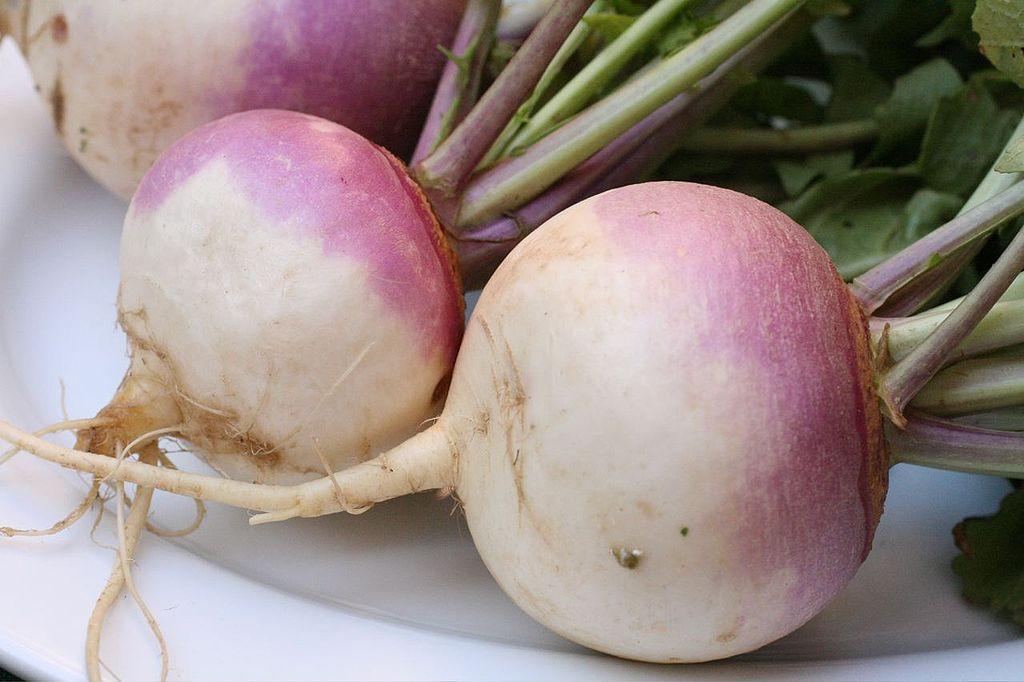 Ingredient of the Week: Turnip