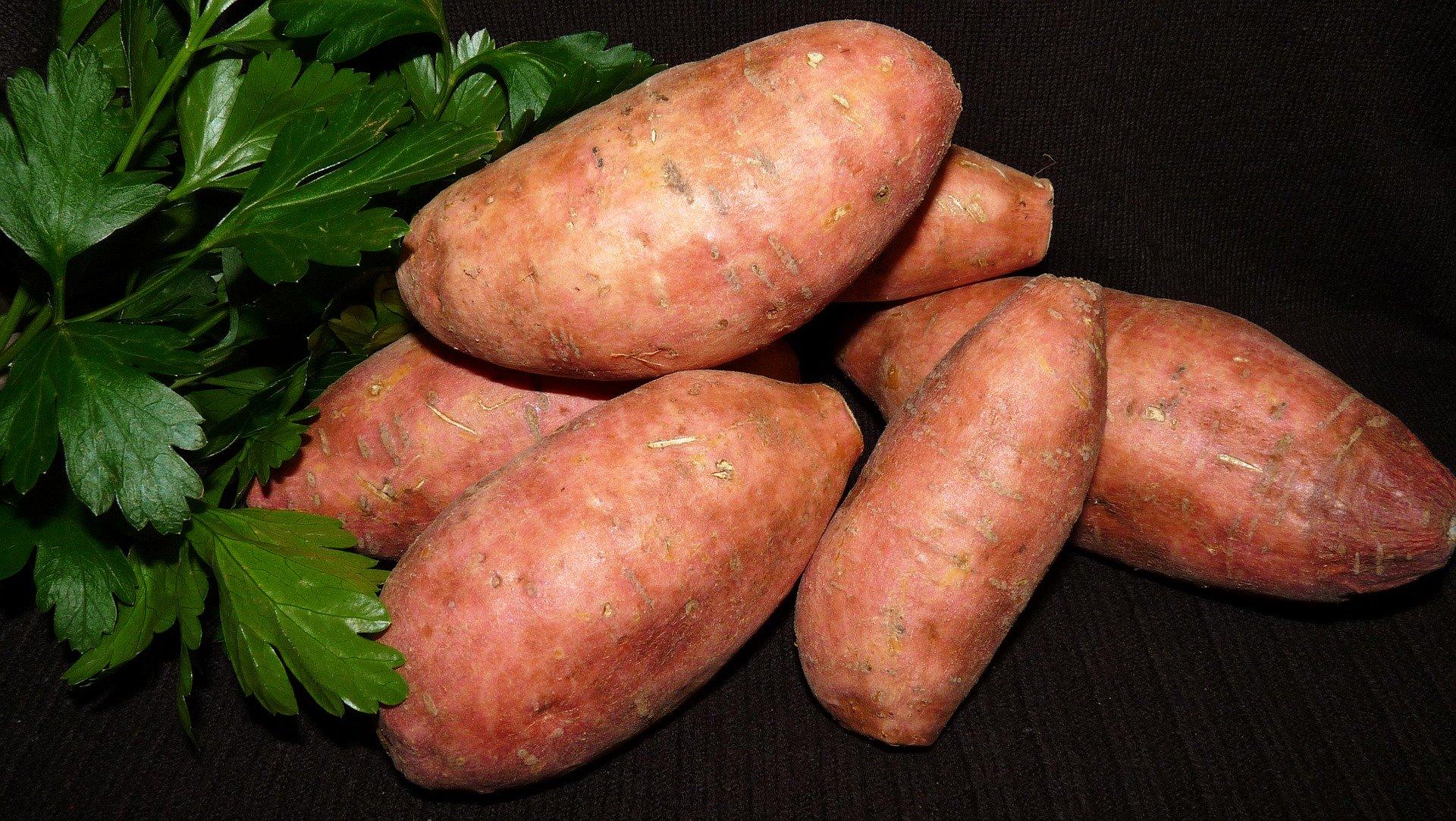 Ingredient of the Week: Sweet Potato